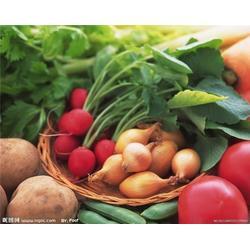 西安蔬菜配送、西安蔬菜配送服务、西安蔬菜配送公司图片