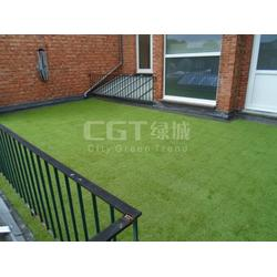 草坪_CGT绿城_屋顶绿化草坪图片