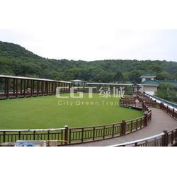 幼儿园人造草坪|草坪|CGT绿城图片