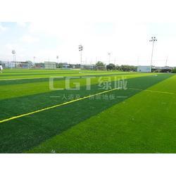 CGT绿城|人造草|人造草坪多少钱图片