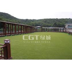CGT绿城_草坪_人工草坪绿化图片