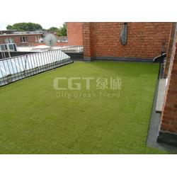 人造草_人造草坪每平米需要多少钱_CGT图片