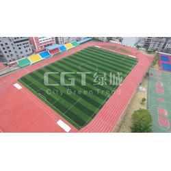 人造草坪厂家、草坪、CGT绿城(图)图片