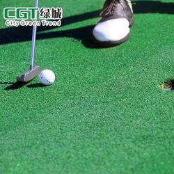 CGT 幼儿园草坪 草坪图片