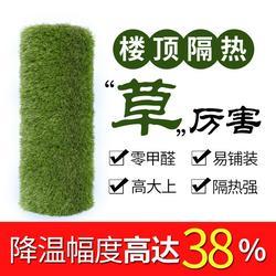 草坪,CGT,人工草坪绿化图片
