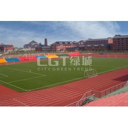 草坪_CGT绿城_足球场草坪图片