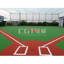 CGT绿城(图),幼儿园人造草坪,草坪图片
