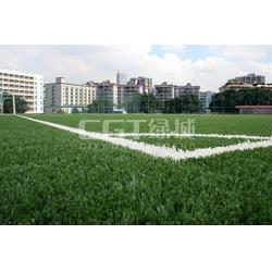CGT绿城、人造草坪、足球场人造草坪图片