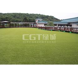 人造草坪,草坪,CGT绿城图片