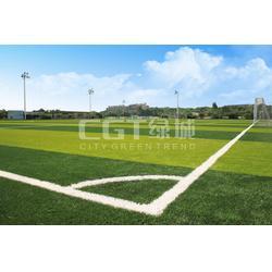 CGT绿城、人造草、足球场 人造草图片