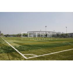 标准足球场人造草坪、人造草坪、CGT绿城(查看)图片