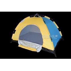 易路达双人单层自动帐篷图片