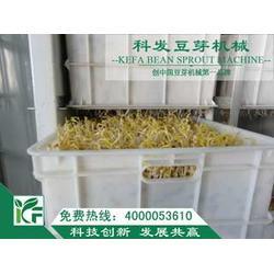豆芽|大型豆芽机|科发豆芽机械图片