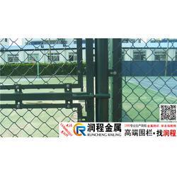 体育场围栏_房顶体育场围栏施工_5人制足球场围栏@图片