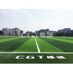 足球场人造草 CGT人造草