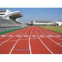 塑胶跑道草-海明宇(已认证)葫芦岛塑胶跑道图片