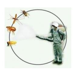 江汉区灭蚊蝇、武汉小区杀灭蚊蝇、工厂灭蚊蝇图片
