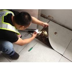 古建筑白蚁预防、武汉白蚁预防公司、武汉白蚁预防图片