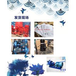 双极消防泵、运城消防泵、博山泵业公司图片