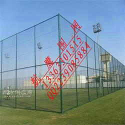 门球场铁丝网围栏,门球场围网设计安装方案,球场钢丝护栏网图片