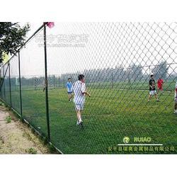 体育防护网图片