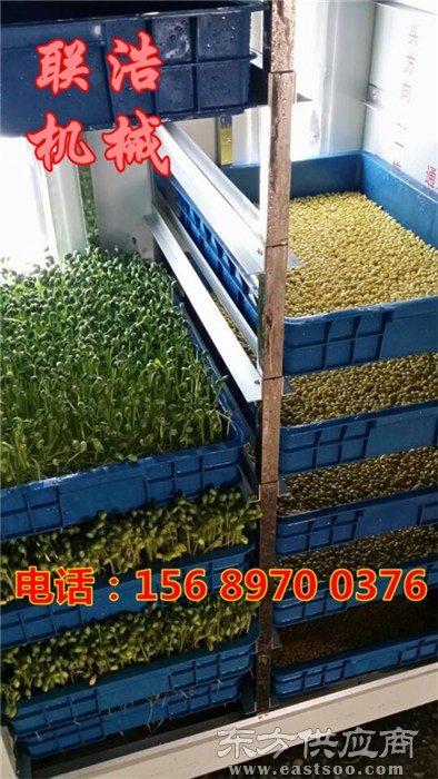 浙江芽苗菜机械-全自动多用豆芽机械-多用型芽苗菜机械图片