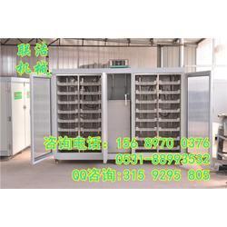 多功能豆芽机 自动豆芽机设备厂家 多功能豆芽机多少钱一台图片