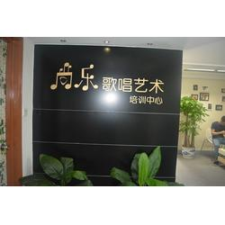 大剧院唱歌培训|尚乐培训|唱歌图片