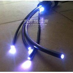 供应超亮14mm导光光纤/通体、侧光实芯光 黑皮导光棒图片