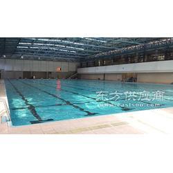 泳池工程 游泳池建造 找法国戴高乐 泳池行业的领先者图片