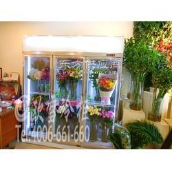 进口鲜花冷藏柜的一般价位是多少图片