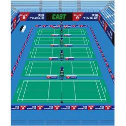 运动地胶-天速运动地胶-榆林乒乓球运动地胶图片