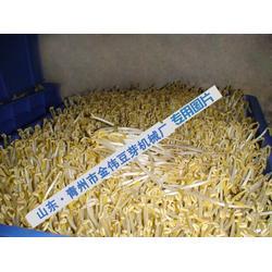 金伟家用豆芽机哪种好 哪家豆芽机好用-豆芽机图片