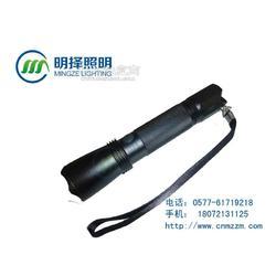 BGH2604防爆微型充电手电BGH2604图片