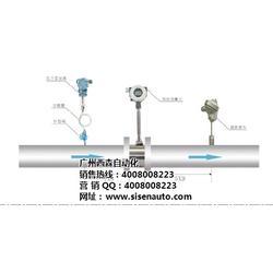 西森·中国,江西涡街流量表,江西涡街流量表哪家好图片