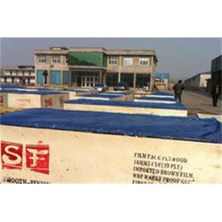 普利马木业(图) 建筑模板 菏泽建筑模板图片