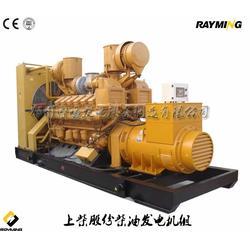 柴油发电机-平顶山柴油发电机-雷鸣发电设备图片