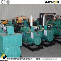 柴油发电机组-发电机-雷鸣发电设备(查看)图片