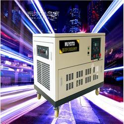 12KW三相汽油发电机组-水冷图片