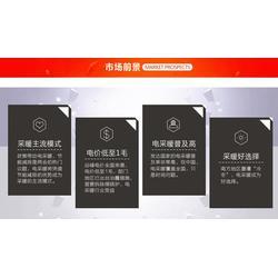 碳晶壁挂电暖器、上海壁挂电暖器、阳光益群(查看)图片