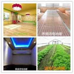 阳光益群,天津碳纤维电地暖,代理碳纤维电地暖图片