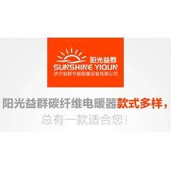 济宁益群,海南碳纤维电暖器,碳纤维电暖器代理图片