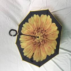 上海太阳伞、太阳伞厂家、雨蒙蒙广告伞(优质商家)图片