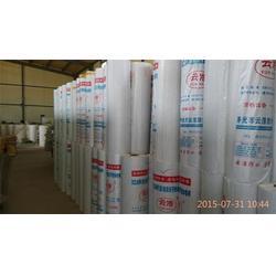 优质阻燃剂聚乙烯丙纶,衡水阻燃剂聚乙烯丙纶,寿光云浩防水公司图片