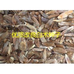 诚博娱乐药材种子_中药材种子交易网_福清药材种子图片