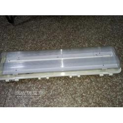 BAY81-220防爆防腐全塑荧光灯图片