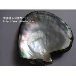 眼镜贝壳配件加工-佳禾五金加工厂(已认证)眼镜贝壳配件图片