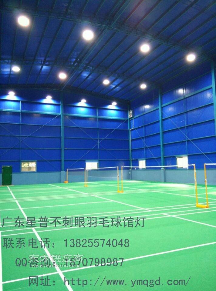 高档室内羽毛球馆照明灯图片