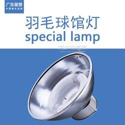 羽毛球馆使用面光源球馆灯的优势图片