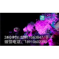 怀柔会议舞台背景出租/怀柔话剧演出灯光租赁图片